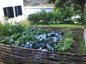 gardenng season